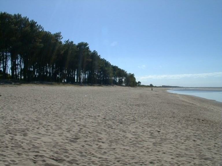 Playas en Colonia
